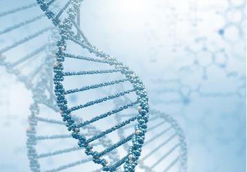 Где можно сделать анализ ДНК в Краснодаре, фото — «Реклама Краснодара»