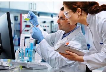 Анализы на паразитов в Геленджике: где можно сдать, фото — «Реклама Геленджика»