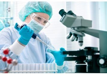 Где делают анализ на тестостерон в Геленджике, фото — «Реклама Геленджика»