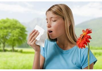 Анализ на аллергию в Сочи: где можно сделать, фото — «Реклама Сочи»