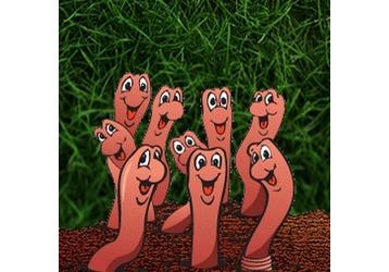 Где можно сдать анализы на паразитов в Анапе, фото — «Реклама Анапы»