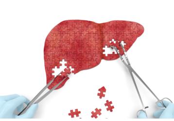 Анализы на гепатит в Геленджике: где можно сдать, фото — «Реклама Геленджика»