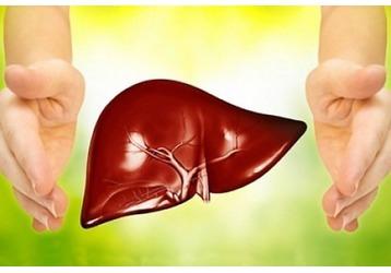 Где можно сдать анализы на гепатит в Адлере: клиники, цены, фото — «Реклама Адлера»