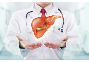 Где сдать анализы на гепатит в Туапсе, фото — «Реклама Туапсе»