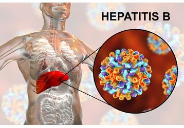 Где можно сдать анализы на гепатит в Ейске, фото — «Реклама Ейска»