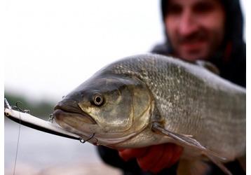 Где ловить рыбу в Сочи, фото — «Реклама Сочи»