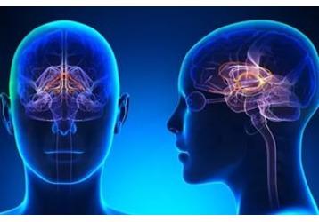 Где найти невролога в Новороссийске, фото — «Реклама Новороссийска»