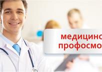 Category_profosmotr_andromeda_ordinarnaya