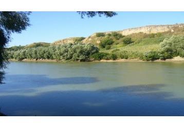 Где можно купаться в Кропоткине, фото — «Реклама Кропоткина»