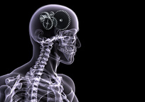 Category_chelovek-rentgen-skelet-chernyy