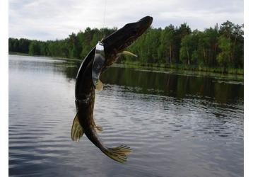 Где можно ловить рыбу в Крымске, фото — «Реклама Крымска»