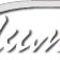 Limo_plus_logo