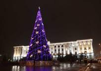 Category_1325936539_16-gorodskaya-elka