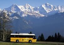 Category_620x327-avtobusom_k_moryu.aef