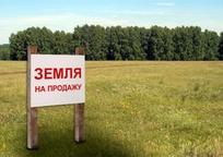 Category_1410507496_skolko_budet_stoit_ukrainskaya_zemlya