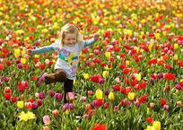 Как проведут майские праздники крымчане (мероприятия, время, места), фото — «Рекламы Фороса»