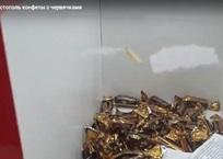 В «Муссоне» торгуют конфетами с червяками, фото — «Рекламы Севастополя»