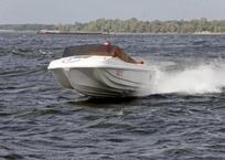 В Азовском море столкнулись два катера - пострадали три человека, фото — «Рекламы Гурзуфа»