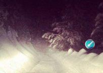 Дорогу на плато Ай-Петри накрыли две лавины ФОТО, фото — «Рекламы Крыма»
