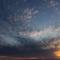 Micro_screenshot_5
