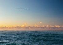 Кипящее море и корабли в Севастополе (уникальные ФОТО и ВИДЕО), фото — «Рекламы Севастополя»
