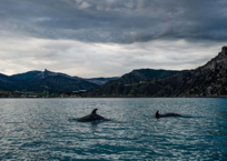 Крым это: Каким туристы увидели полуостров этим летом ФОТО, фото — «Рекламы Евпатории»
