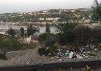 Площадь Ушакова отпугивает туристов кучами мусора ФОТО, фото — «Рекламы Севастополя»