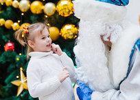 Через дверь или в окно: сколько стоит Дед Мороз в Крыму, фото — «Рекламы Белогорска»