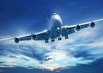 Пьяная крымчанка избила стюардессу самолета, летевшего из Москвы, фото — «Рекламы Коктебеля»