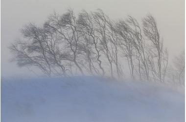 Буря усиливается: в Крым идут сильные метели, туман и гололедица, фото — «Рекламы Севастополя»