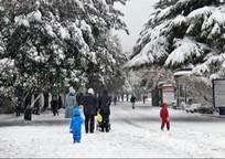 Category_eshe-odin-kollaps-na-krym-obrushatsya-snegopady-i-15gradusnyi-moroz-96058-54