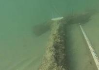 У берегов Севастополя обнаружены артефакты времен Римской империи ВИДЕО, фото — «Рекламы Севастополя»