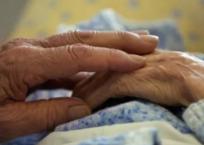 Севастополец избил 87-летнюю пенсионерку из-за палки колбасы, фото — «Рекламы Севастополя»