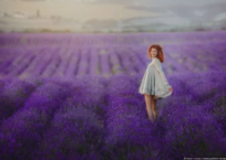Персики, маки, лаванда, подсолнухи: график полевых фотосессий в Крыму ФОТО, фото — «Рекламы Евпатории»