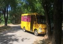 Пьяная компания в Крыму угнала и разбила маршрутку ФОТО, фото — «Рекламы Крыма»