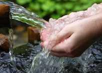 В каких родниках Севастополя опасно пить воду, фото — «Рекламы Севастополя»