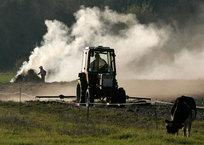Водный баланс на полях Крыма восстановится в течение 5 лет, фото — «Рекламы Коктебеля»