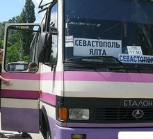 Mini_avtobusy-800x429-00d