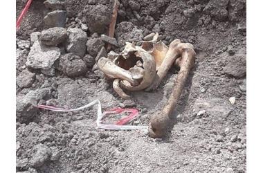Во дворе школы Симферополя нашли человеческие останки, фото — «Рекламы Бахчисарая»
