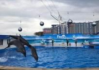 В Севастополе открылся дельфинарий в Парке Победы ФОТО, фото — «Рекламы Севастополя»