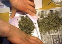 В Симферополе поймали подростка с пакетом марихуаны, фото — «Рекламы Крыма»