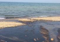 Пляжи под Бахчисараем снова затопило нечистотами, фото — «Рекламы Приморского»