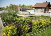 Новшества для садоводов с 1 января: Дачи превращаются в жилые дома с «пропиской», фото — «Рекламы Севастополя»