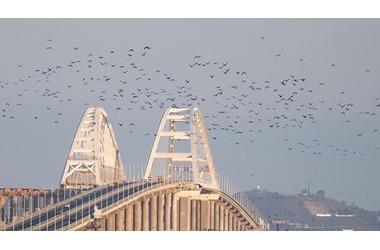 """На Украине уже """"сносят"""" Крымский мост, фото — «Рекламы Фороса»"""
