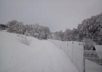 Ай-Петри замело снегом ФОТО, фото — «Рекламы Алупки»