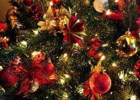 Новый год по-феодосийски: афиша праздничных мероприятий , фото — «Рекламы Крыма»