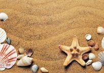 У пляжа «Учкуевка» сменился оператор, фото — «Рекламы Севастополя»