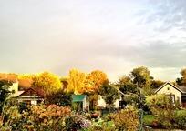 Category_autumn-61984_960_720