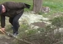 Севастопольцы пытаются спасти старейший можжевельник на мысе Сарыч, фото — «Рекламы Севастополя»
