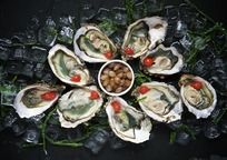 Category_oysters-1209767_960_720